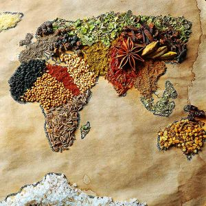 259010936_food_studies_map